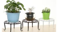 Read more about the article Best Flower Pot Stand India 2021-Dealsuper